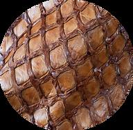 Pirarucu Skin.png