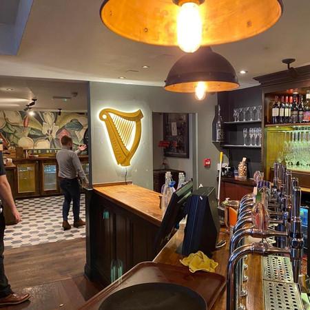 Guinness Harps