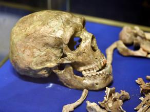 Neanderthal funerary flowers