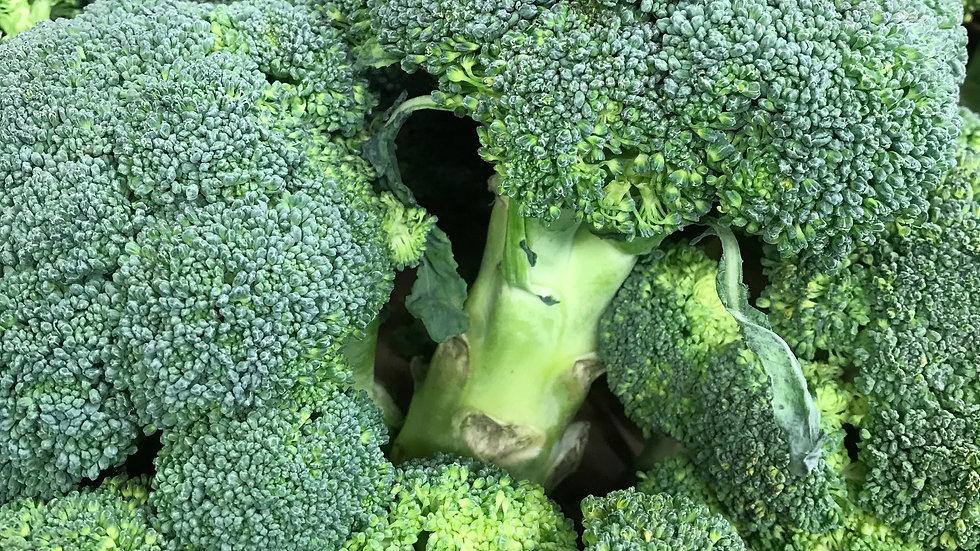 Chou Brocoli Vert