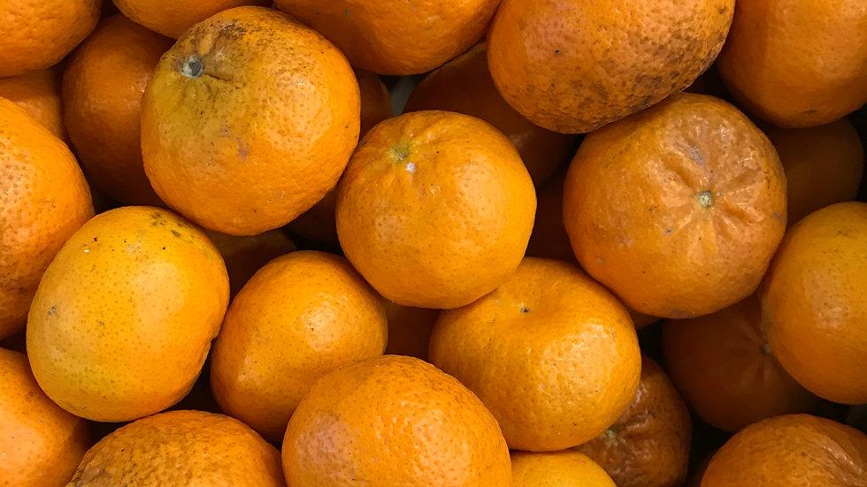 Mandarine Nova