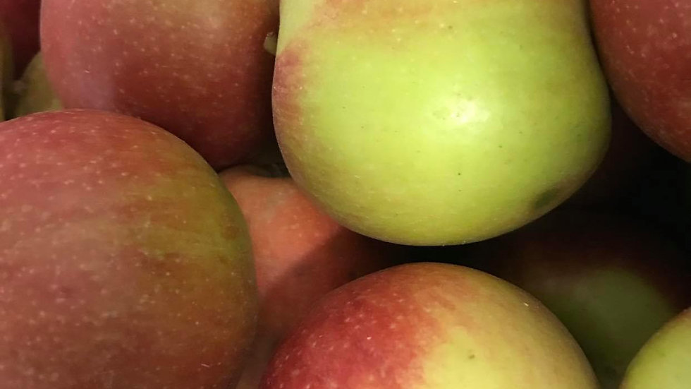 Pomme Braburn