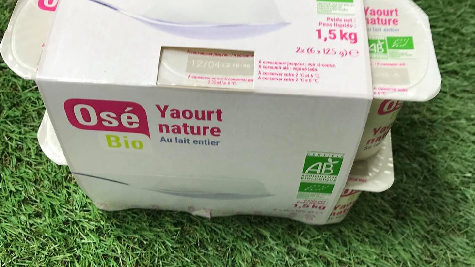 Yaourt Nature x12