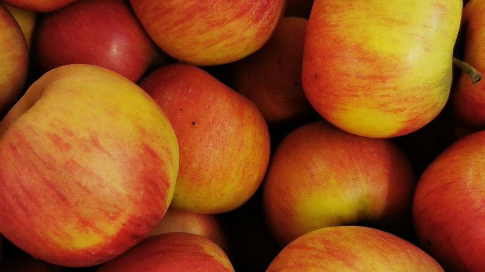 Pomme Pirouette Demeter