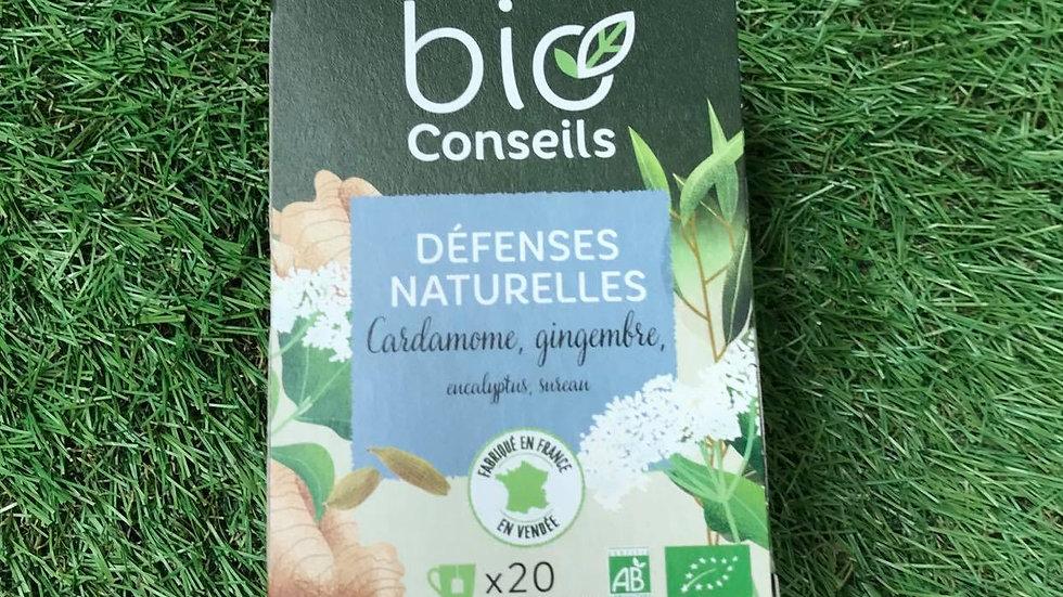 Infusion Bio Conseils Défenses Naturelles