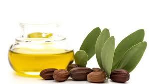 Soapy Science: Jojoba Oil
