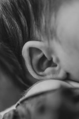 Ear Detail Shot