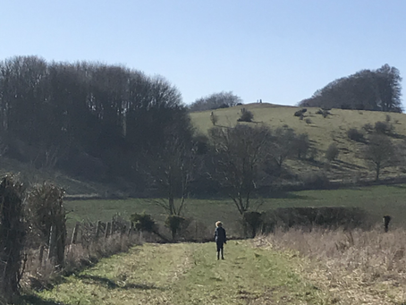 Visiting Danebury Hill Fort in Hampshire