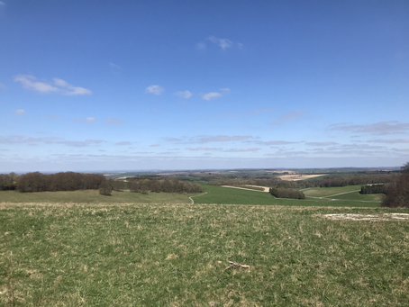 Hike: From Cheesefoot Head across the South Downs to Chilcomb and back.
