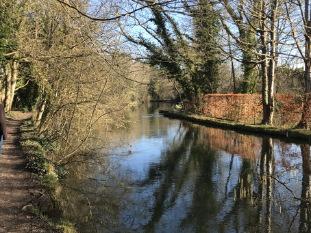Hike: From Brambridge to St Catherine's Hill on the Itchen Navigation Path