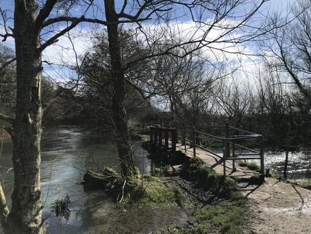 Hike: Back to Itchen Navigation Trail from Bishopstoke to Brambridge