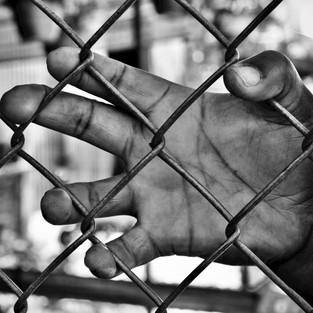 A la Cerca (At the Fence)