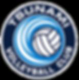Tsunami Logo 2_edited.png