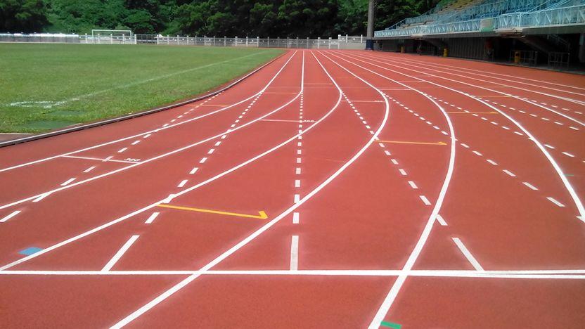 2014 Shing Mun Valley Sports Ground 02