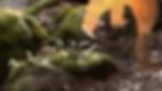 Capture d'écran 2020-03-09 à 11.32.06.pn