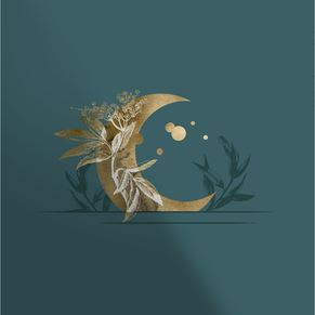 Moon Icon Design