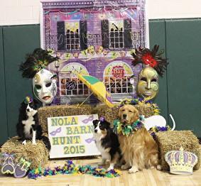 Mardi Gras Madness  February 2015  Trial 3