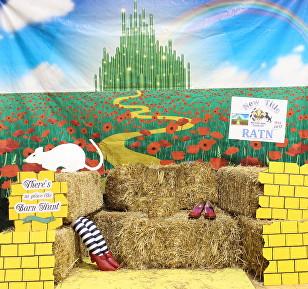 NOLA Rat Goes To Oz! May 2017 Trial 9
