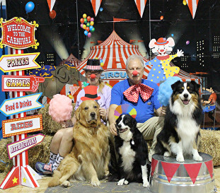 NOLA Rat Goes  To The Circus! July 2017 Trial 10
