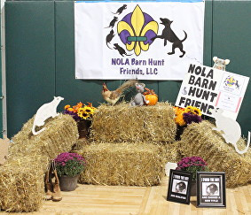 Nola Barn Hunt Friends New Orleans Kenner Metairie La