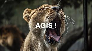 agis.png