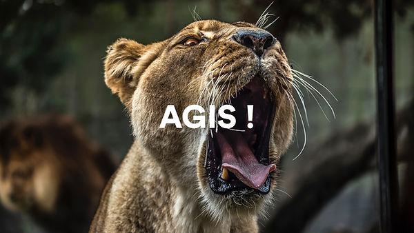 web agis.jpg