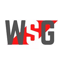 World Security Group Ltd Logo (1).png