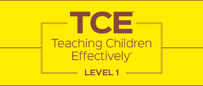 Teaching Children Effectively Level 1