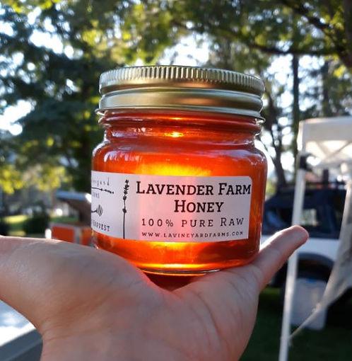 Lavineyard Farms Honey 3.JPG