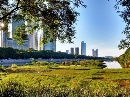 Repensando las ciudades. Los ríos urbanos
