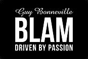 BlamAudio.png