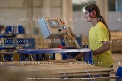 Production_ganivelles_acacia
