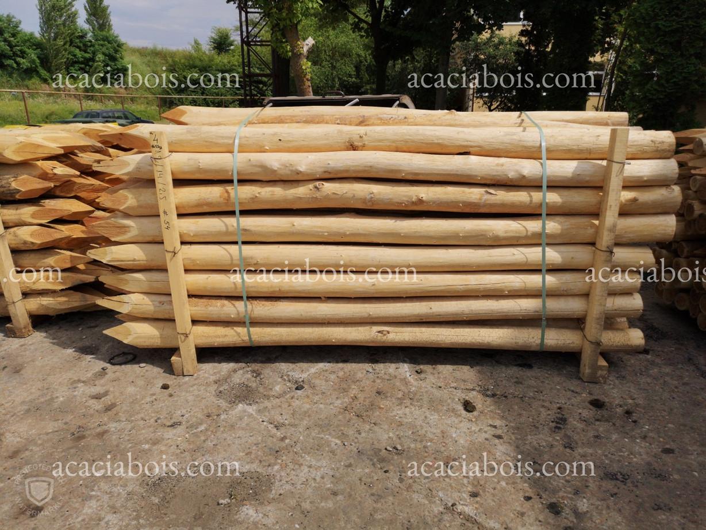 3.5m_12-14cm_Robinia Palen_Piquets_acaci