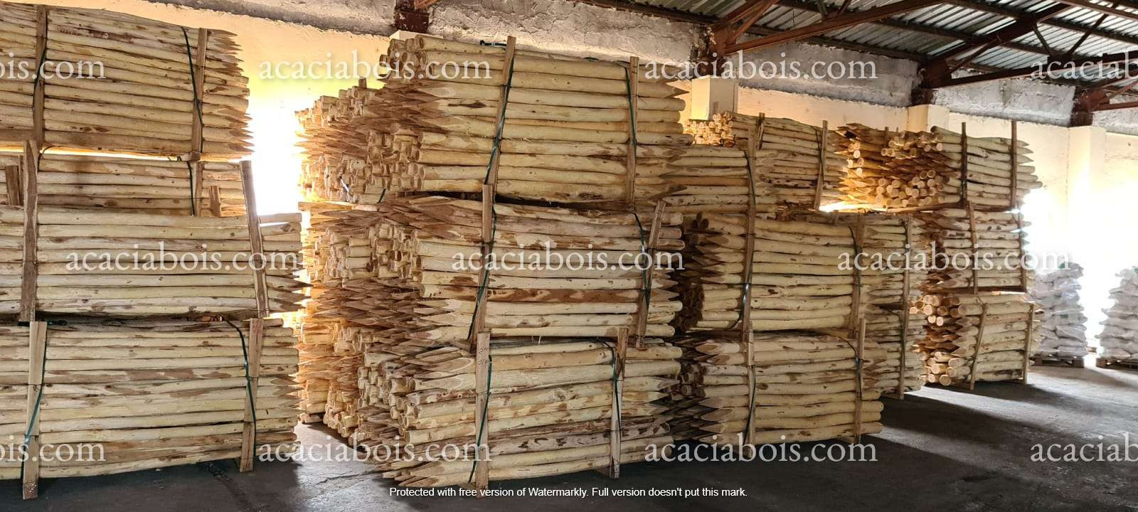 Stock_piquets_acacia.jpg
