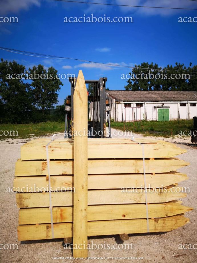 2.5m_10-10cm_piquets_acacia_carré_pointé