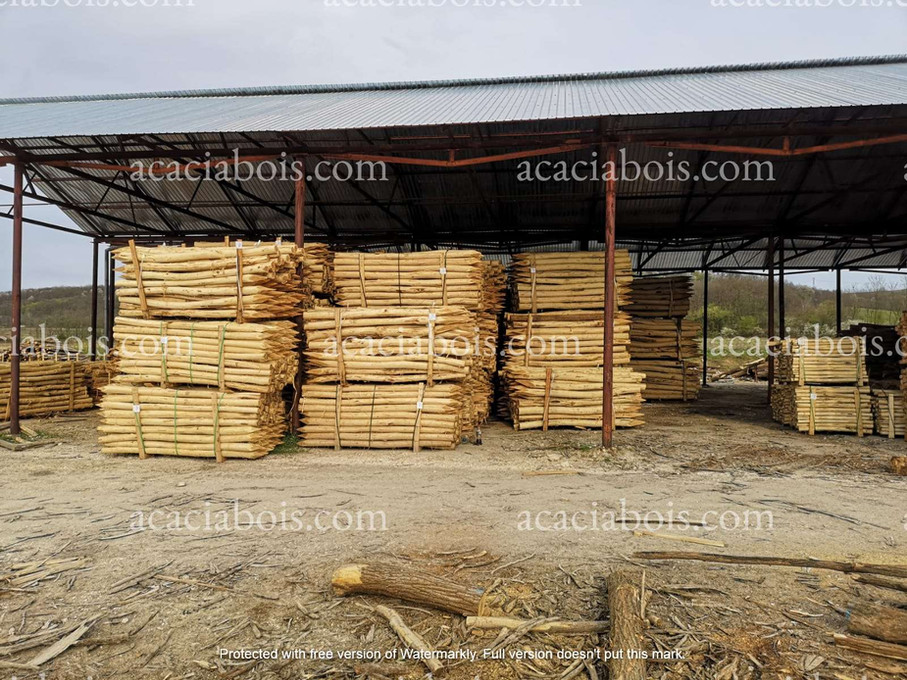 Stock_piquets_acacia_2.5m_3m.jpg