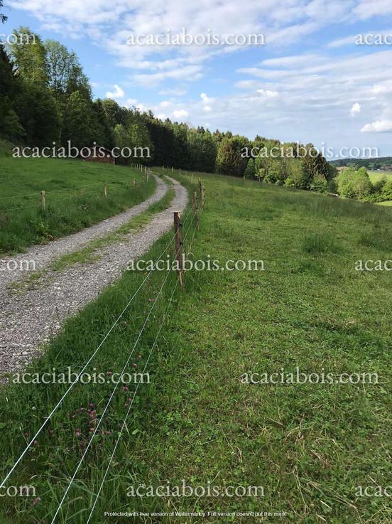 2.0m_8-10cm_piquets_acacia_ronds_clôture