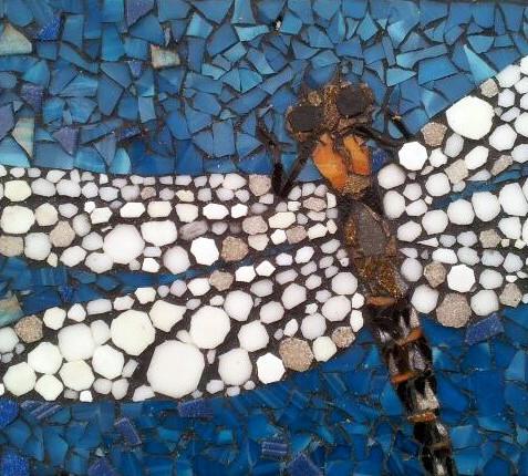 Dragonfly Mini