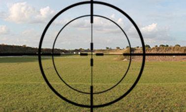 Basic Shooting Skills and Handgun Safety