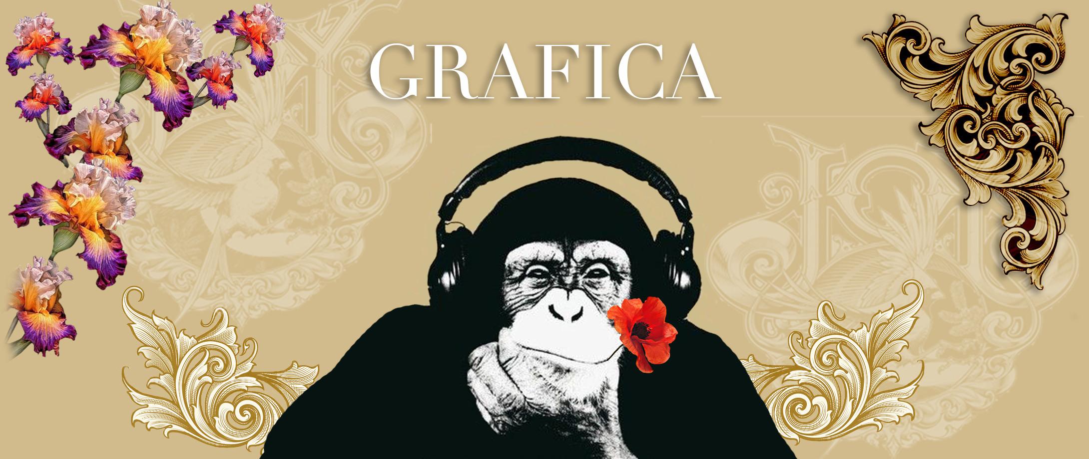graphic scimmia.jpg