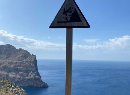 Stress -> Urlaub -> Stress?