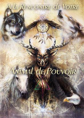 ChrisPALETTE- Animal de Pouvoir.jpg