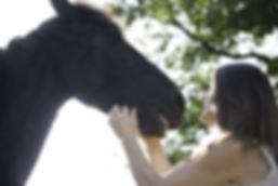 MN-&-cheval.jpg