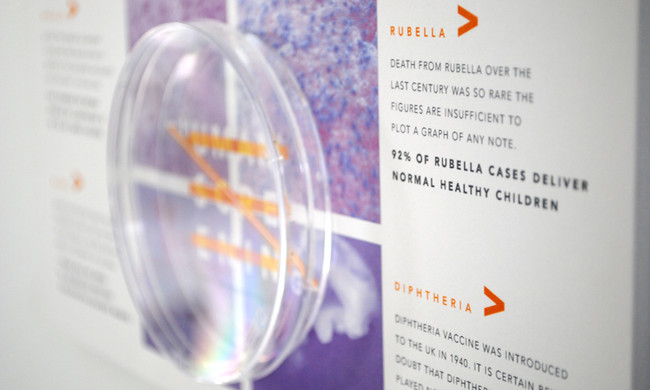 Human Screening Campaign and Brand Design