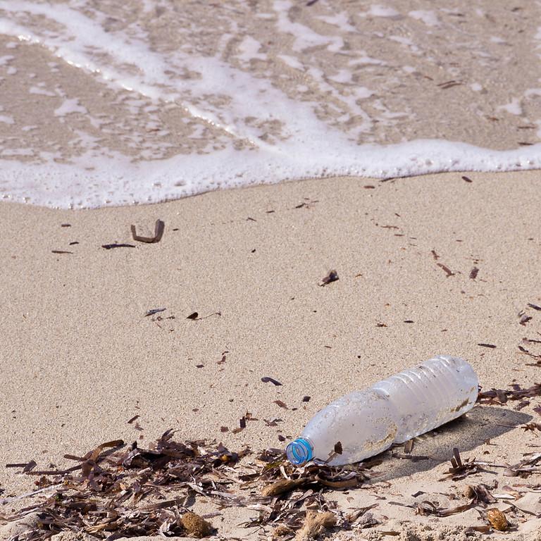 ICC – International Coastal Clean Up