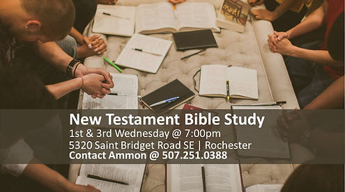 Rochester Study.jpg