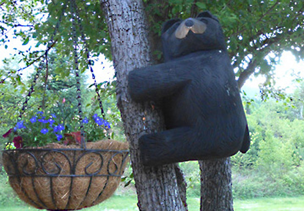 Carved bear climbing tree