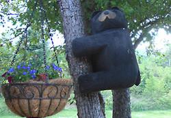 Carved bear climbing tree