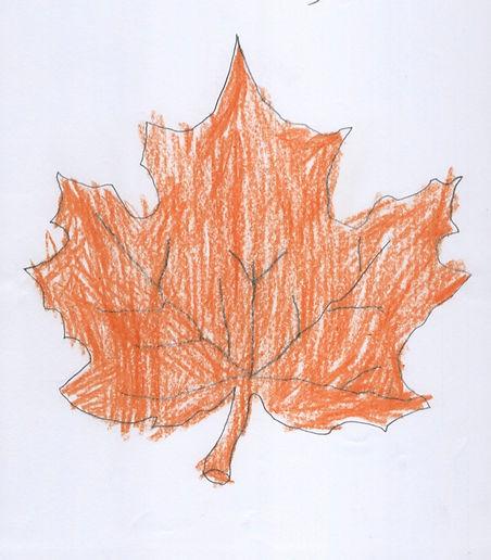 Belle Hwang Nov kinder leaf.jpg