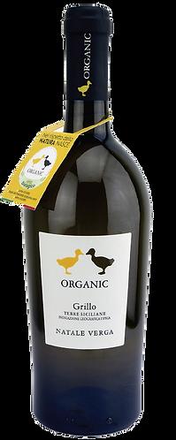 Sicilia Organic White